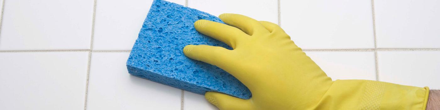 Sponge Cleaning